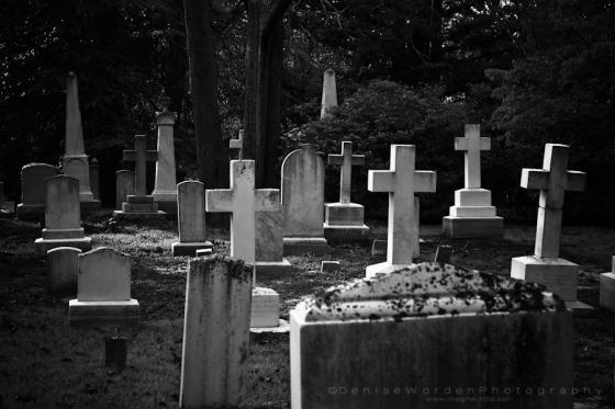 Grave markers, Scotland Neck, NC